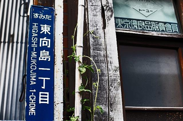 鳩の街にて  この住居表示が写真を始めるきっかけになった住居表示です