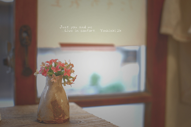 花瓶と可愛い花?