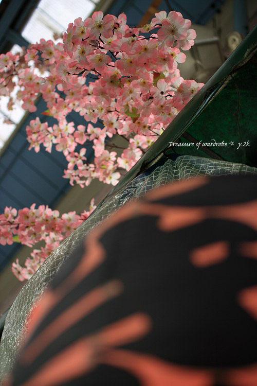 もうじき 桜が咲きますね