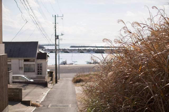 それで漁港に向かって坂道を下りてみた